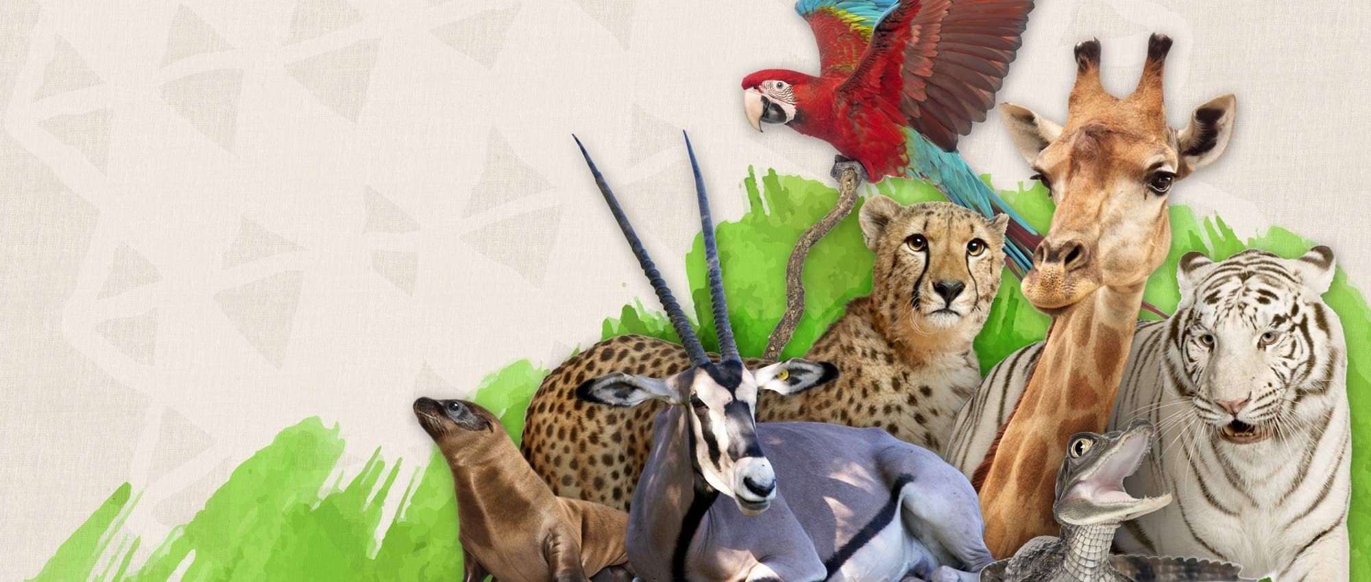 Essay On Conservation Of Wildlife In Hindi